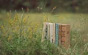 books-in-field